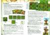 grandbois.pdf - application/pdf